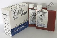 血管紧张素转化酶测定试剂盒 ACE