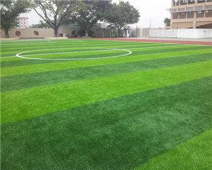 学校操场是用天然草坪好还是人工草坪好?