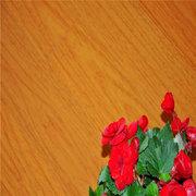 海南實木地板安裝-實木地板施工的技術要領